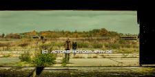 cinema_ergo_sum_extinction (21)