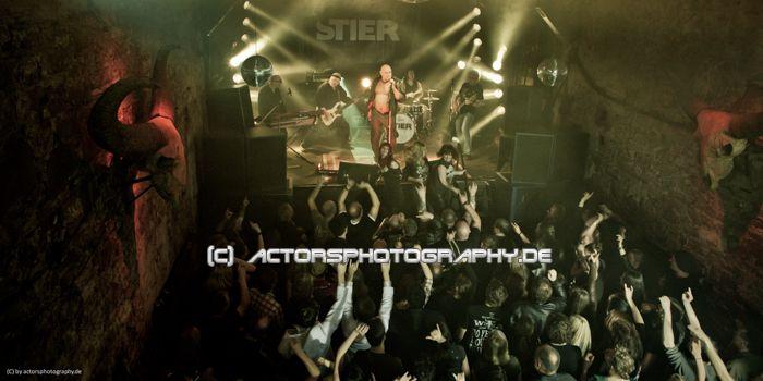 rex_film_king_ping_stier (4)